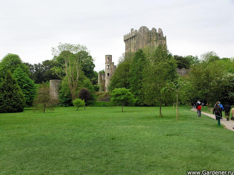 sad_i_zamok_blarney_castle_and_gardens_4.jpg