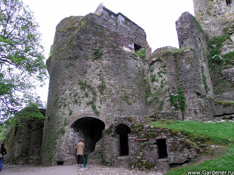 sad_i_zamok_blarney_castle_and_gardens_6.jpg