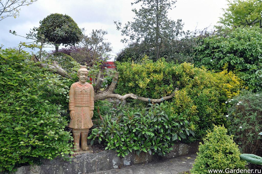 sad_irlandii_boyces_gardens_5.jpg