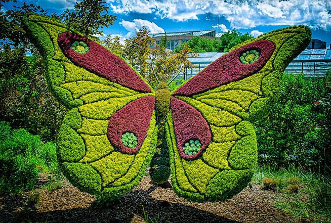 jivie_giganti_iz_botanicheskogo_sada_atlanti_7.jpg