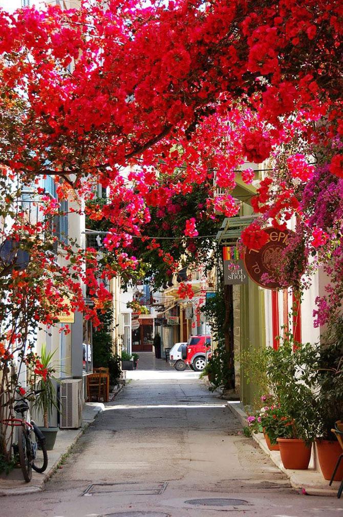 nafplion_greciya.jpg