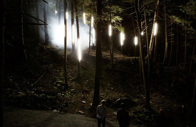 foresta_lumina_tainstvennoe_svetovoe_shoy_v_kvebekskom_parke_ot_monrealskoi_media_stydii_3.jpg