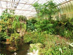 botanicheskii_sad_san_paylo_6.jpg