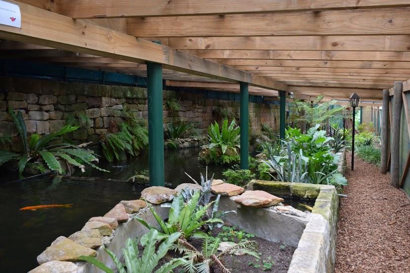 linsgar_gardens_v_hornsbi_16.jpg