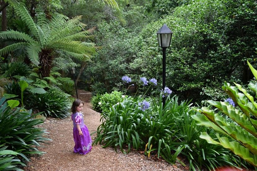 linsgar_gardens_v_hornsbi_25.jpg