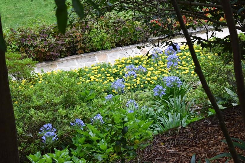 linsgar_gardens_v_hornsbi_45.jpg