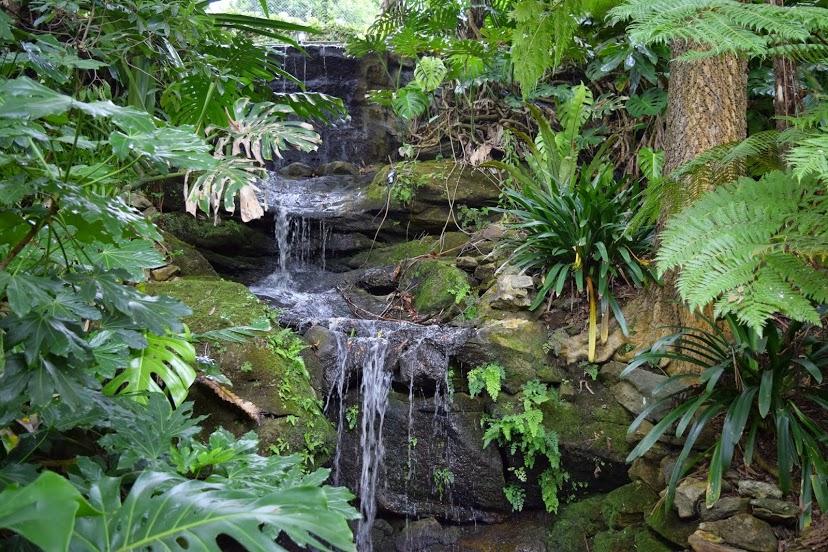 linsgar_gardens_v_hornsbi_6.jpg