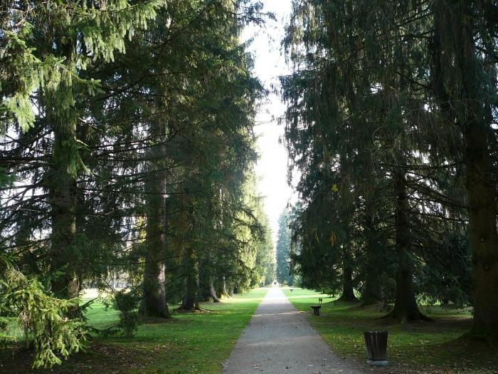 park_zamka_helbrynn_v_zalcbyrge_7.jpg