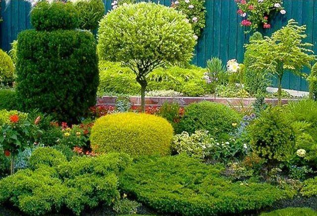 Зелені насадження при проектуванні садової ділянки