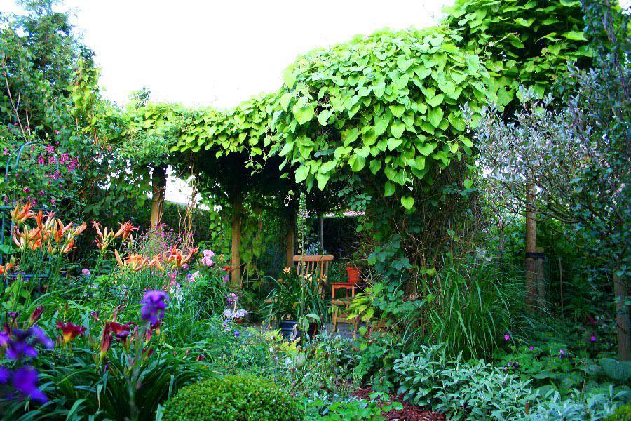 Різновиди структурних посадок рослин