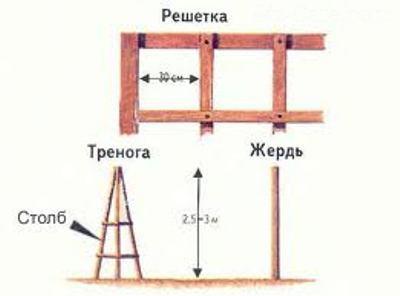 posadka_i_yhod_za_pletistoi_rozoi_pravila_obystroistva_vushegosya_rozariya_3.jpg