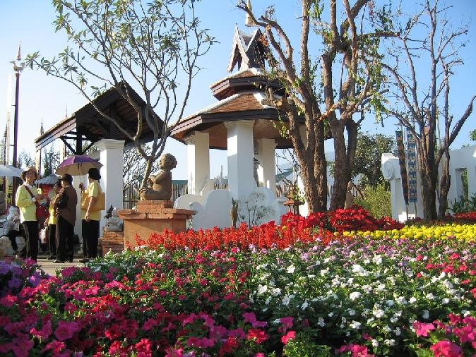 festival_cvetov_v_chiangmae_2014_tailand_2.jpg