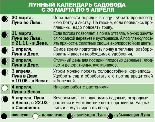 vpisati_te_sho_ne_vpisyetsya_2.jpg