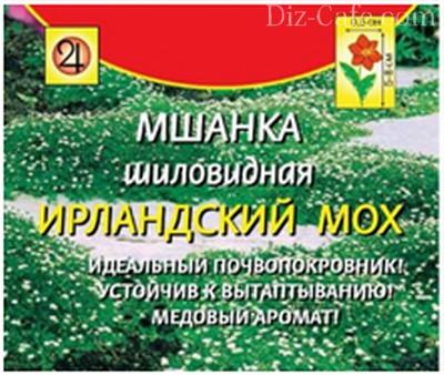 shanka_shilovidnaya_kak_virastit_neprihotlivii_gazon_iz_irlandskogo_mha_3.jpg