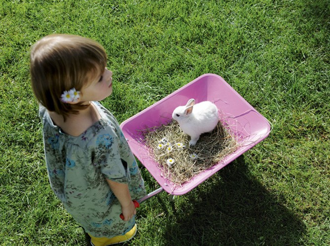 Діти в саду