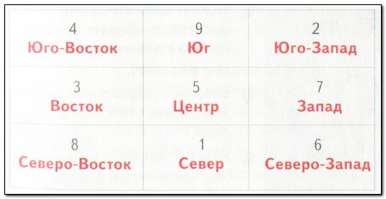 fen_shyi_dlya_kimnatnih_roslin_4.jpg