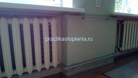 polipropilenovie_trybi_na_estestvennoi_cirkylyacii_8.jpg