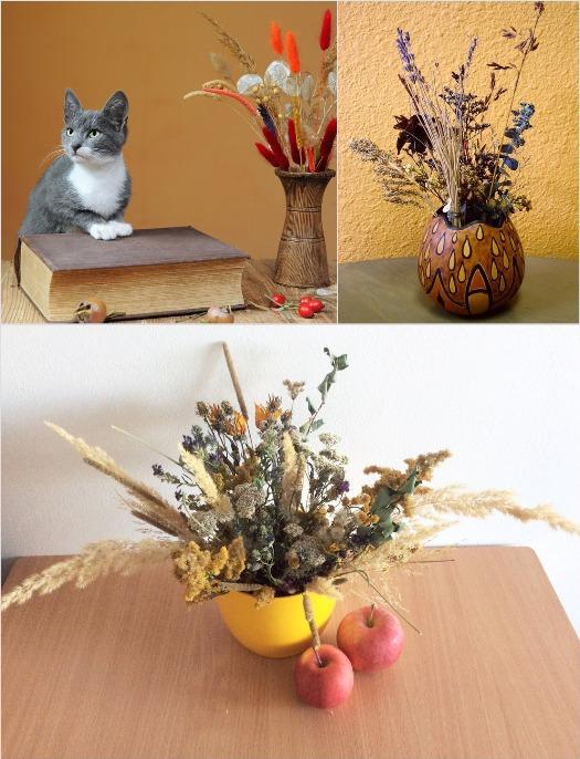 cveti_syhocveti_20_samih_krasivih_rastenii_i_idei_kompozicii_24.jpg