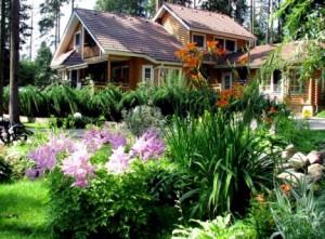Багаторічні садові квіти і рослини для дачі, фото багаторічників