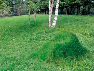 komplekt_terra_dlya_sozdaniya_dachnogo_zelenogo_kresla_1.jpg