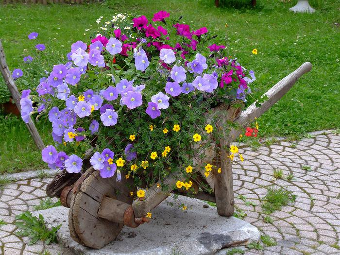 04-flower-bed_51.jpg