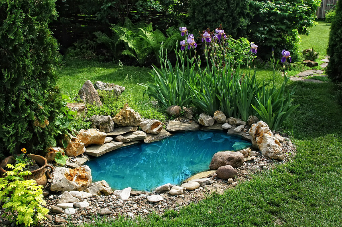 06-pool-and-garden (6).jpg