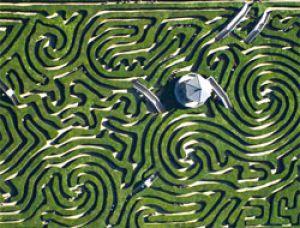 ysadba_longlit_longleat_zelenii_labirint.jpg