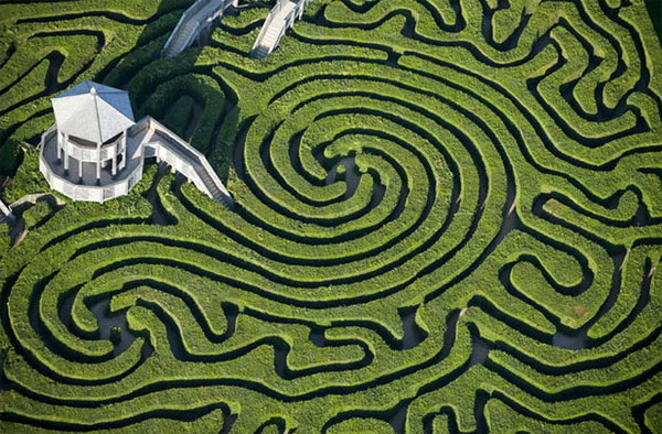 ysadba_longlit_longleat_zelenii_labirint_1.jpg