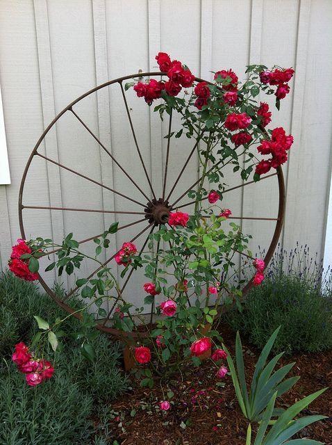 Оригінальні контейнери для квітів: 50+ фото-ідей