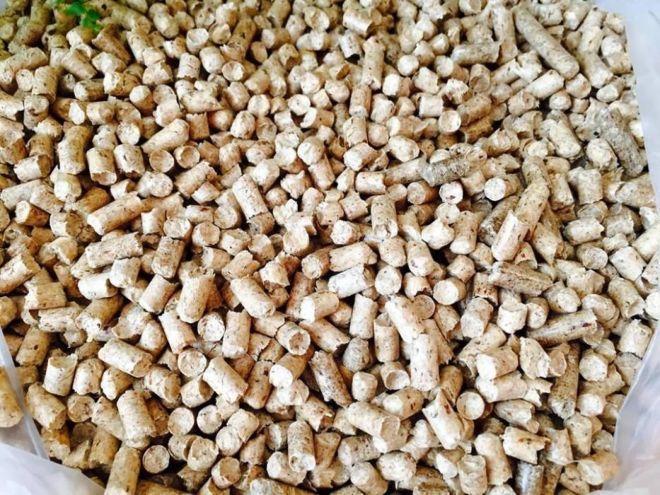 drevesnaya-granula--pellety-dlya-otopleniya-photo-e335.jpg