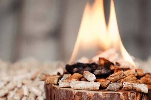 biomass-fuel-pellets-1834655.jpg