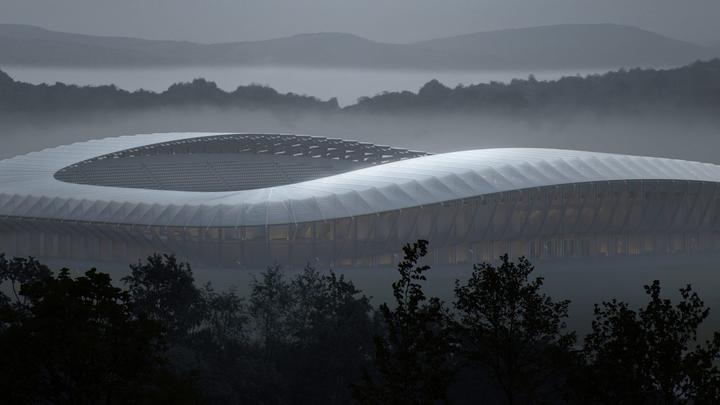 stadion_iz_dereva_1.jpg