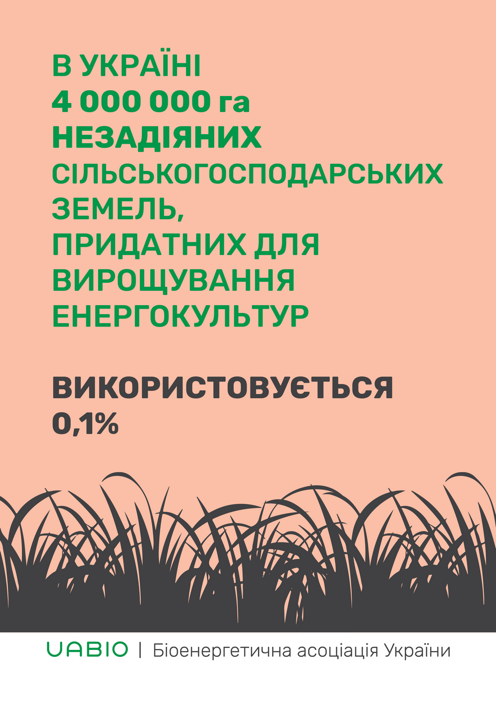 ukrainian-bioenergy-day-campaign-5__.jpg
