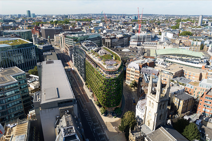citicape-house-green-wall-in-london-08.jpg