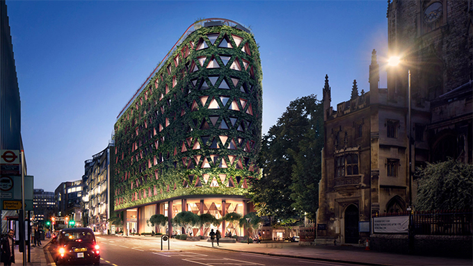 citicape-house-green-wall-in-london-10.jpg