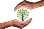 na_symshine_bydyt_razvivat_ekologicheski_orientirovannyu_ekonomiky.jpg