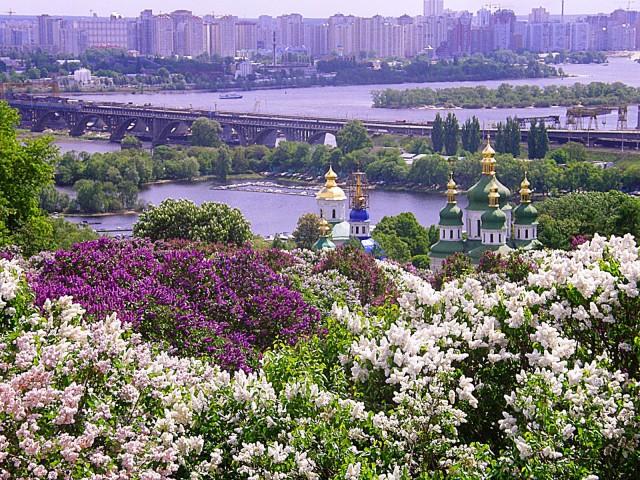byzok_u_botanichnomy_sady.jpg