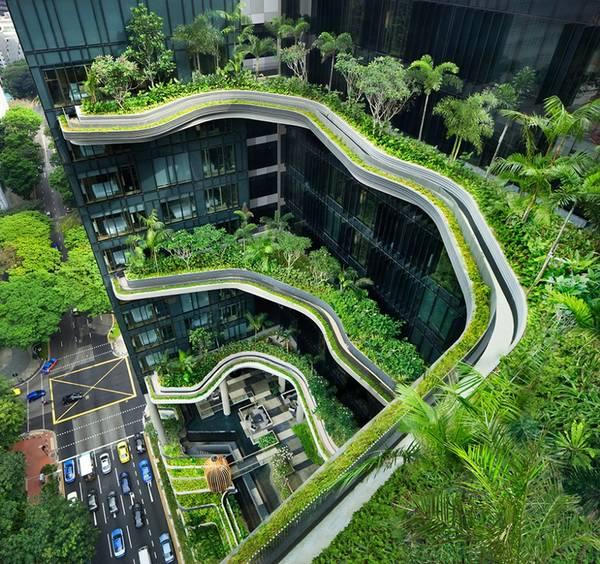 singapure_royal.jpg