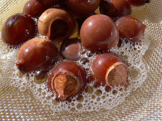 soap-nuts_2.jpg