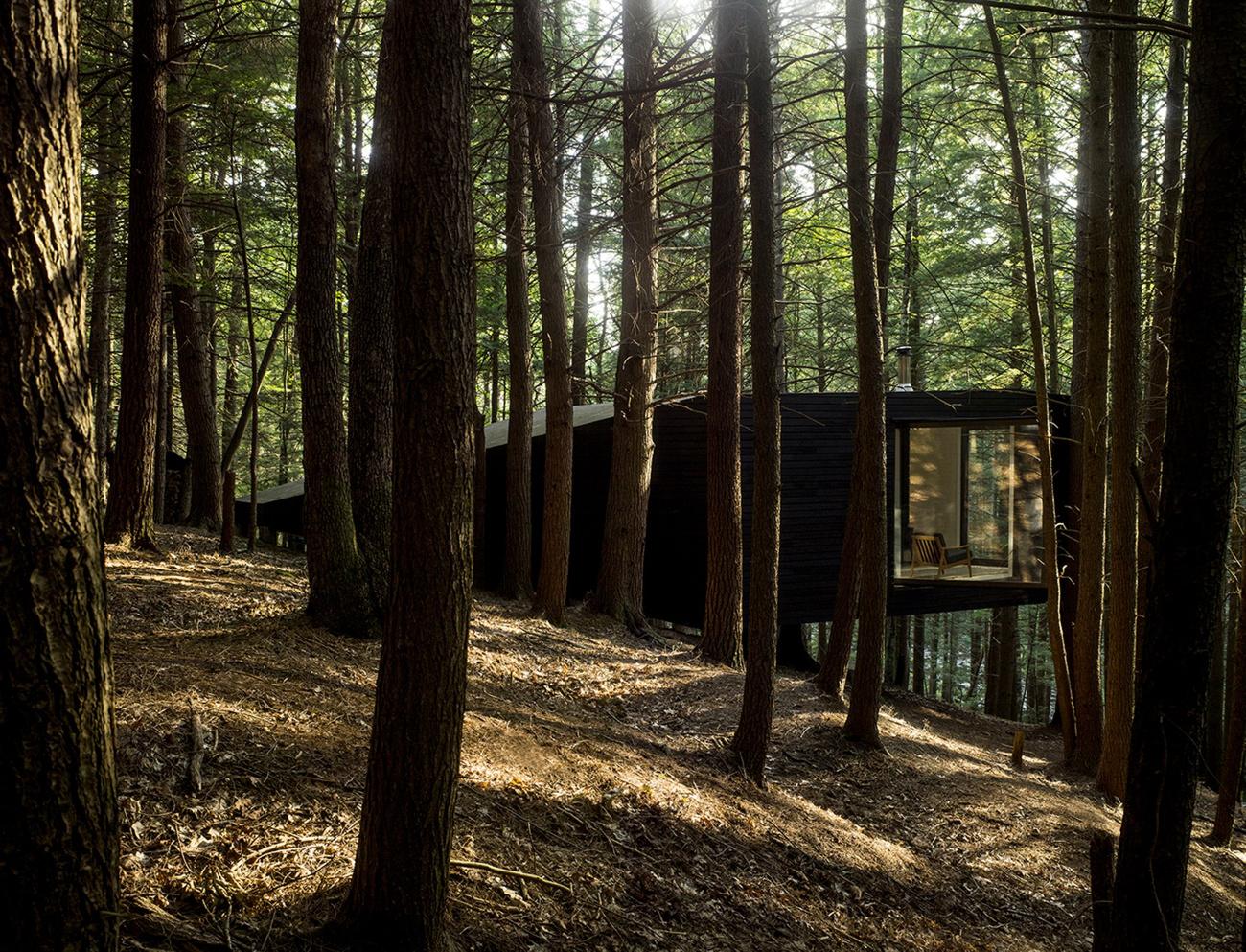 tree-house-10.jpg