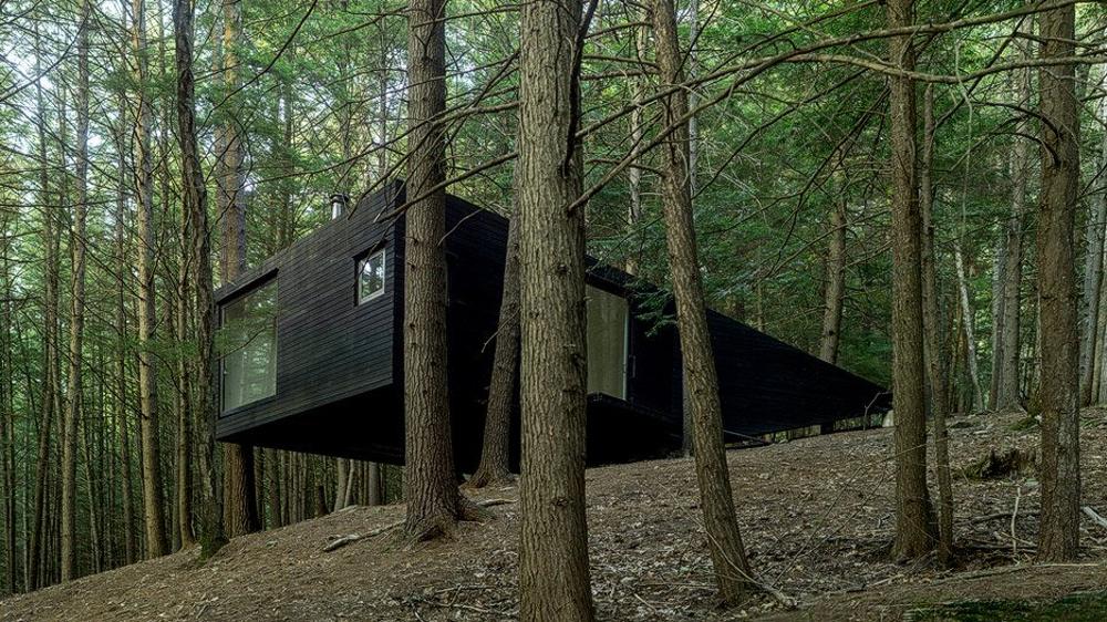 tree-house-5.jpg