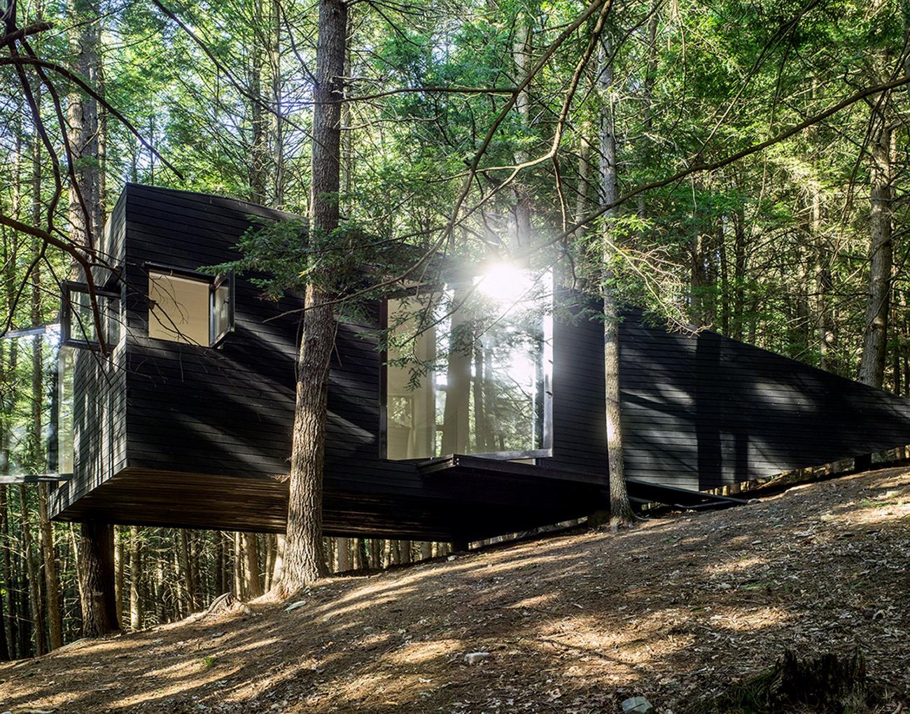 tree-house-8.jpg