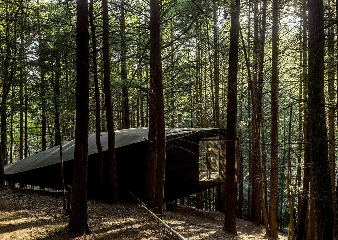 tree-house-9.jpg