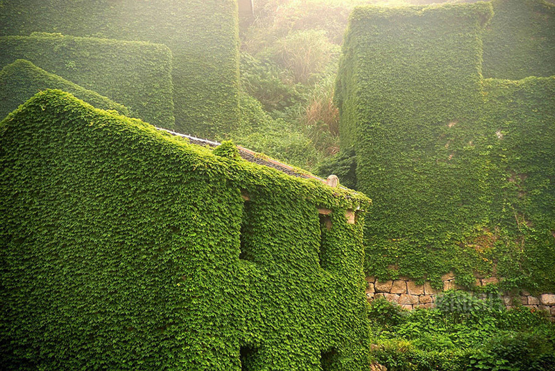 green-island-3.jpg