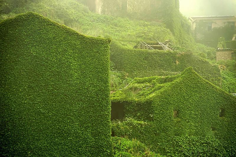green-island-7.jpg
