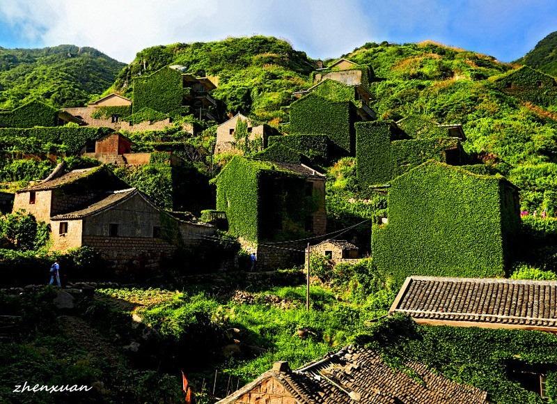 green-island-9.jpg